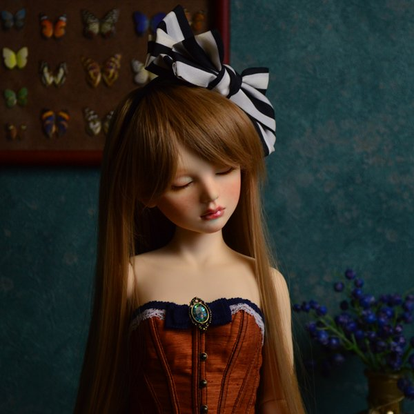 Photo2: Alice(Dreaming ver.) / AiL Dolls - Assembled